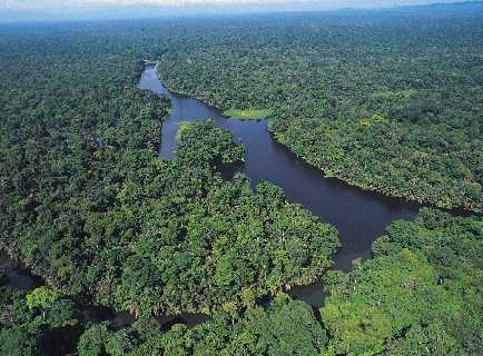 Overnight Tours to the Tortuguero Canals in Costa Rica